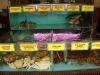 Morska hrana v akvarijih