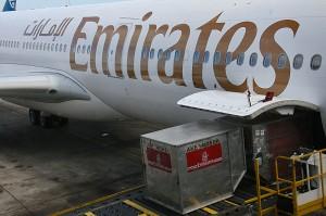 V Avstralijo smo leteli z Emirates