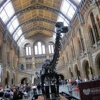Naravoslovni muzej v Londonu