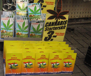 Cannabis Starter Kit